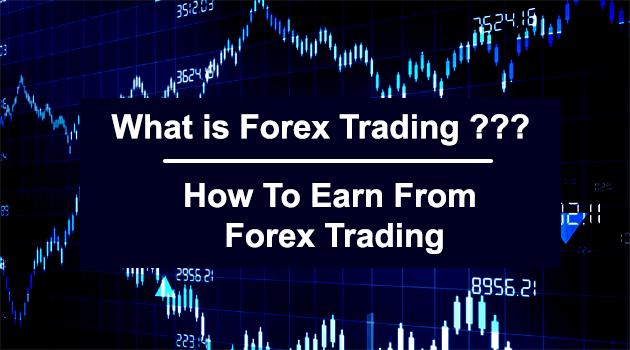 5 Kategori Pemain Pasar Forex - Artikel Forex